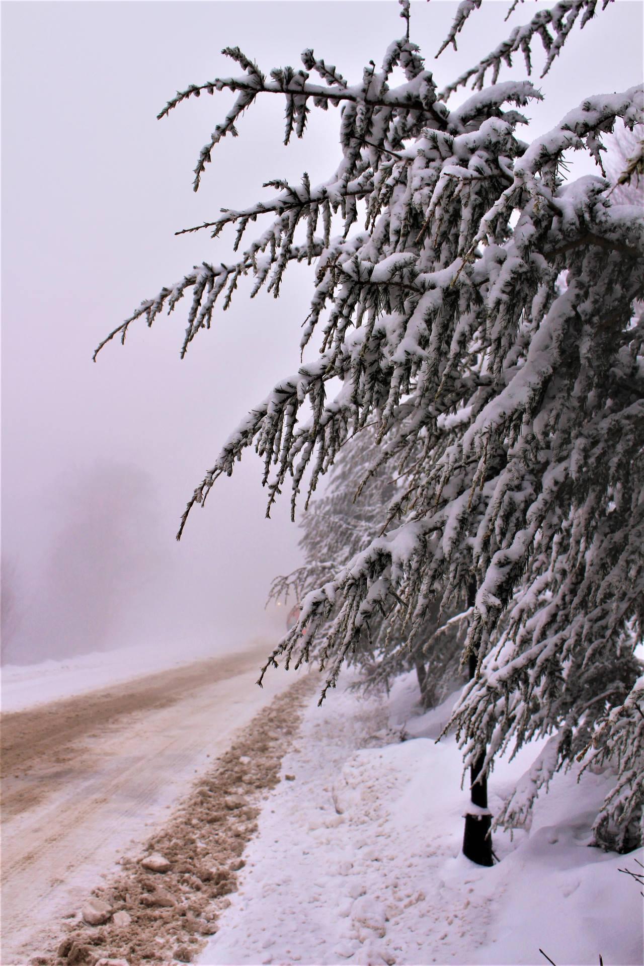 Kartepe'den kış manzaraları