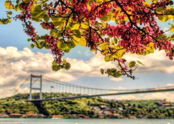 İstanbul'da Bahar